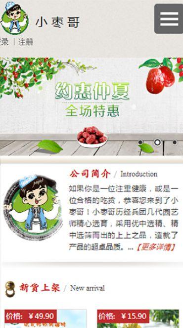 深圳市枣哥商贸有限公司